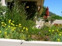 Garden Lover's Landscape