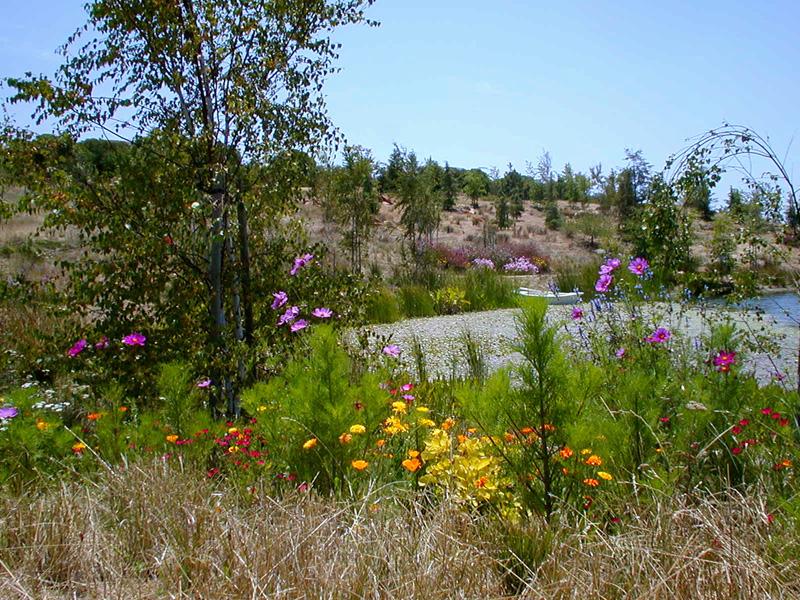 Coyote Canyon, San Luis Obispo
